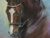 2016 Chiemsee olieverf 60 x 90 cm