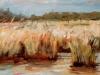2016 Peellandschap 2 oil on canvas 35 x 70 cm
