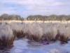 2007 peel-panorama