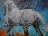 2015 study hindquarters50 x 50 cm VERKOCHT