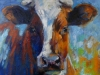 2015 Serie koeien 2 (Small)